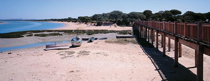 Parque natural bah a de c diz cadiz turismo - Puerto bahia spa cadiz ...